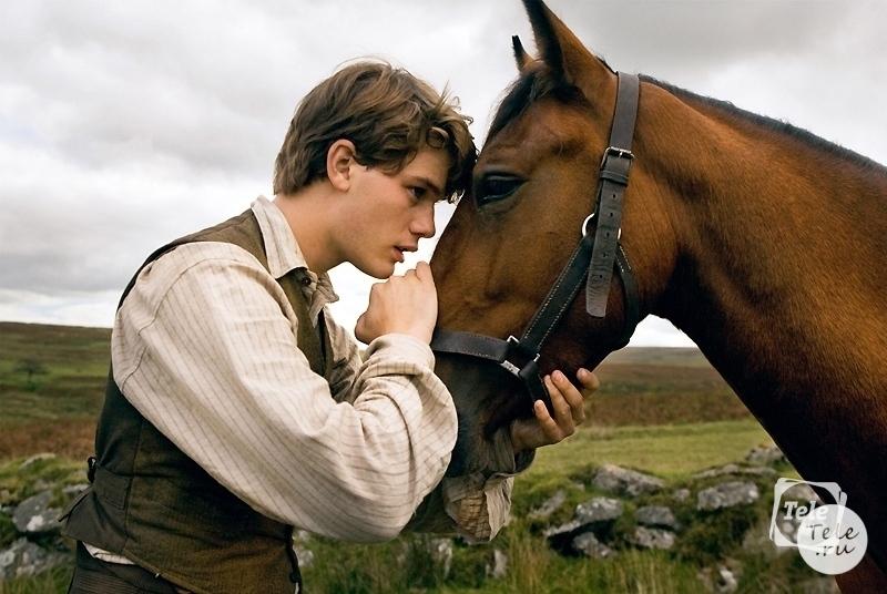 Девочка занимается сексом с конем смотреть