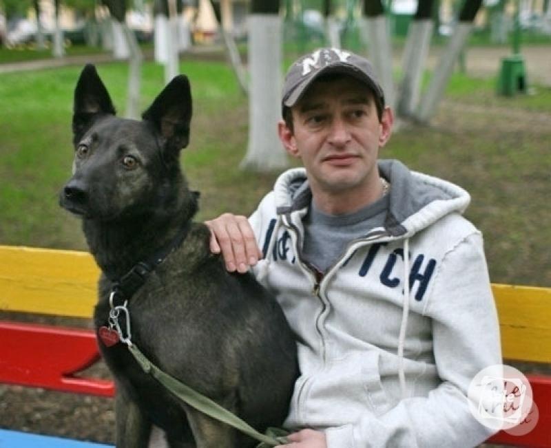 Частное с псом фото 802-401