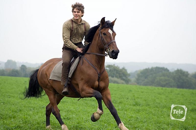 Боевой конь Джереми Ирвин
